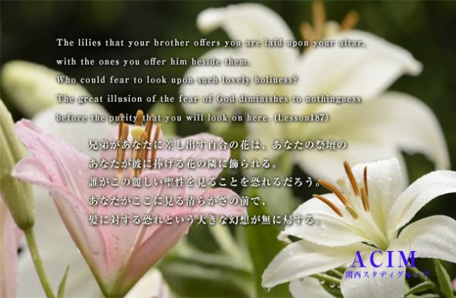 ACIM(奇跡講座・奇跡のコース)のシェア&サポート学習会 | 第10回インターミディエット・シェア会(7/29)