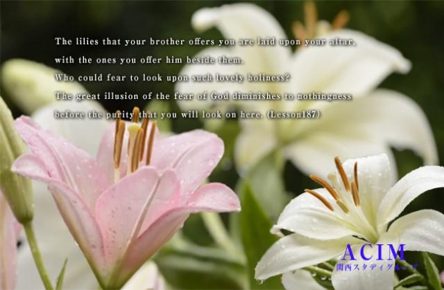 ACIM(奇跡講座・奇跡のコース)のシェア&サポート学習会 | 第105回 シェア&サポートクラス(1/13)